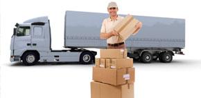 Transport Arhive